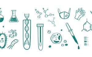 実験計画法実施マニュアル(その12)~第5ステージ:データ解析『最適条件の決め方』