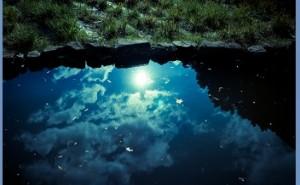 永続地帯: 新環境経営 (その41)