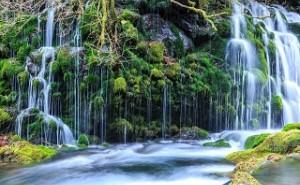 永続地帯: 新環境経営 (その43)