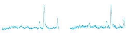 成分分析の自動化