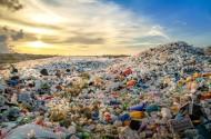 プラスチック資源循環促進法の施行に向けた動き(代替材、認定制度、罰則等)と企業の対応