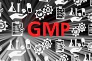 GMP超入門【LIVE配信】