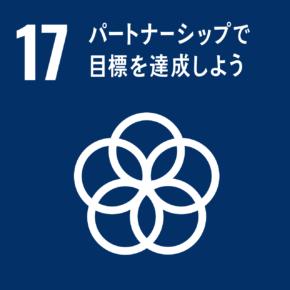 SDGs #17